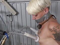Stripping, milking, jerk off