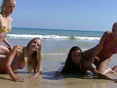 Beach Bikini Chicks